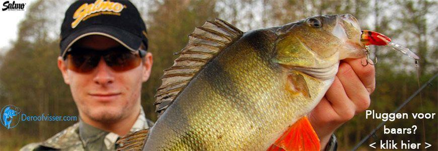baars vissen kunstaas
