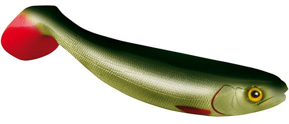 Jackson the shad - 17.5cm - whitefish green